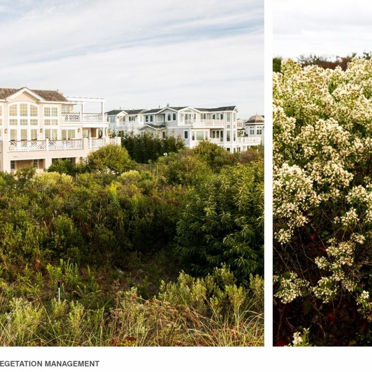 69 best images about 2014 merit design awards winners on for Hess landscape architects