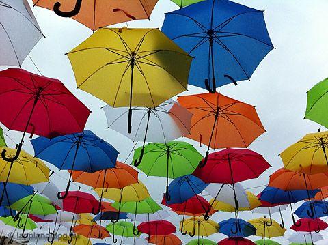 Regenschirme am Himmel - Arktischer Sommer 2015 in Lappland