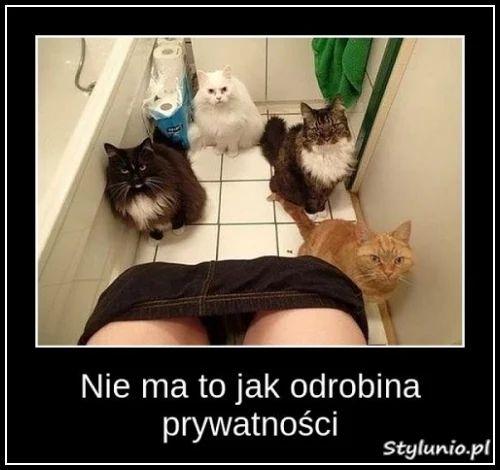 www.stylunio.pl/upload/images/medium/2016/06/nie_ma_to_jak_odrobina_prywatnosci__2016-06-10_20-03-13.jpg
