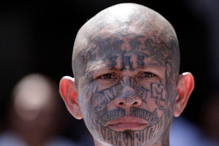 Border agent laments Mexican gang members entering U.S.: 'Why are we letting him in here?' - Washington Times