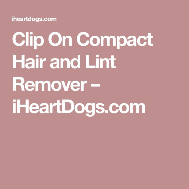 Clip On Compact Hair and Lint Remover – iHeartDogs.com
