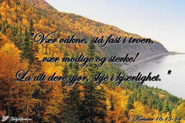 Utholdenhet: Vær våkne, stå fast i troen, vær modige og sterke..
