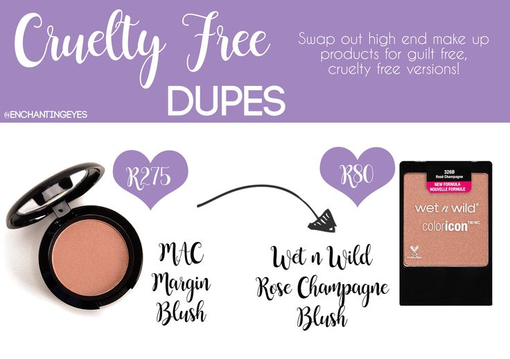 Cruelty Free Dupe Mac Margin Blush vs Wet n' Wild Rose Champagne Blush