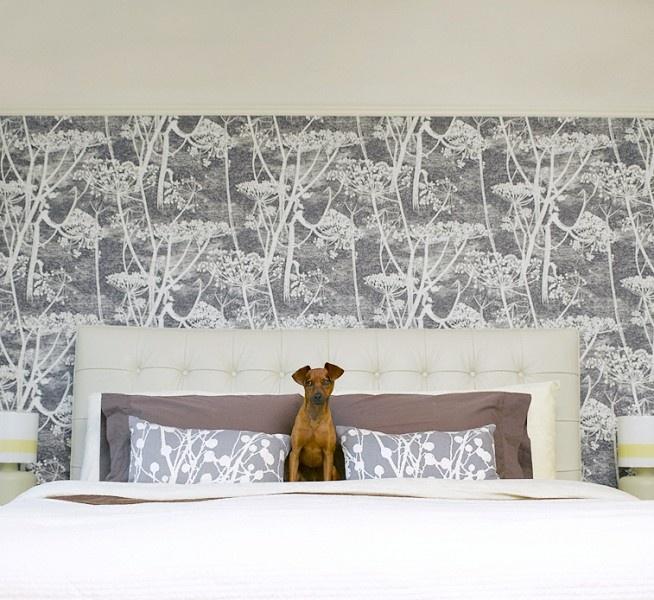 framed wall paper headboard. Cole & Son Cow Parsley wallpaper.
