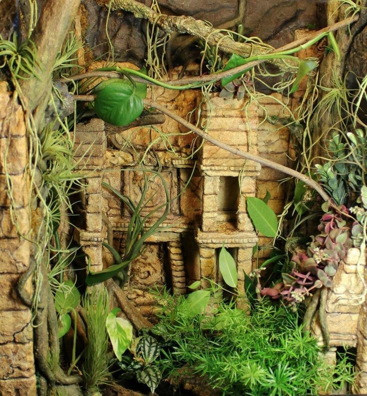 how to build a wood vivarium