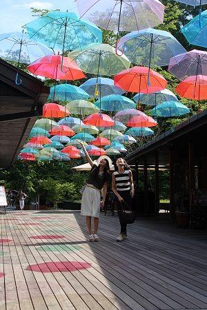 色とりどりの傘が飾ってある、ハルニレテラスの「アンブレラスカイ」。 軽井沢の見所まとめ。