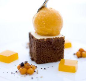 Chocolate Coated Almond Mousse w/Sea Buckthorn Sorbet