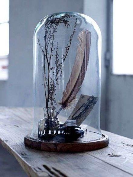 Stilleven in glazen stolp