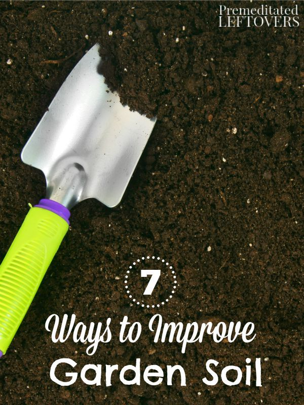 7 ways to improve garden soil