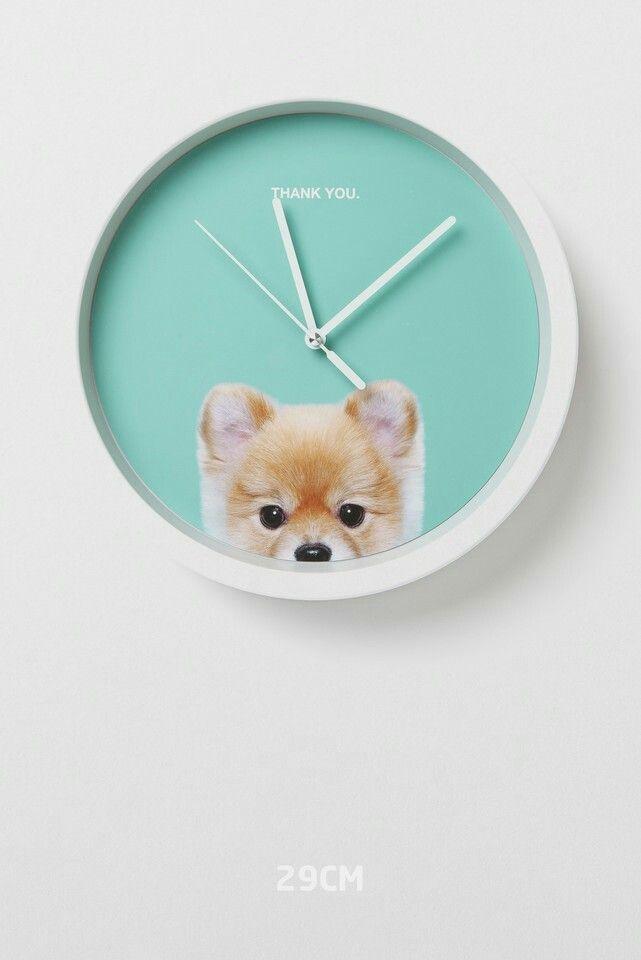 Perro reloj