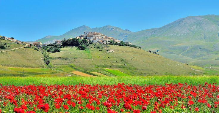 Castelluccio and Poppies... by Renato Pantini on 500px