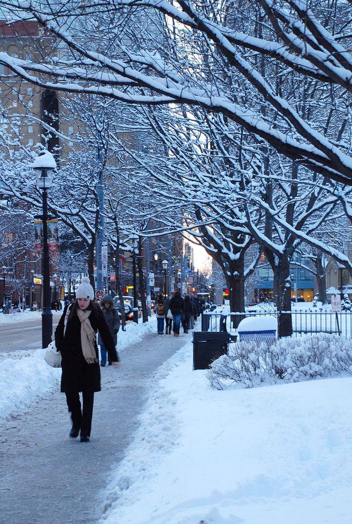 Toronto Winter Street Scene