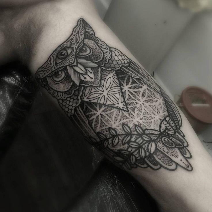 Best 10 Third Eye Tattoos Ideas On Pinterest: 24 Best Three Eyed Owls Images On Pinterest