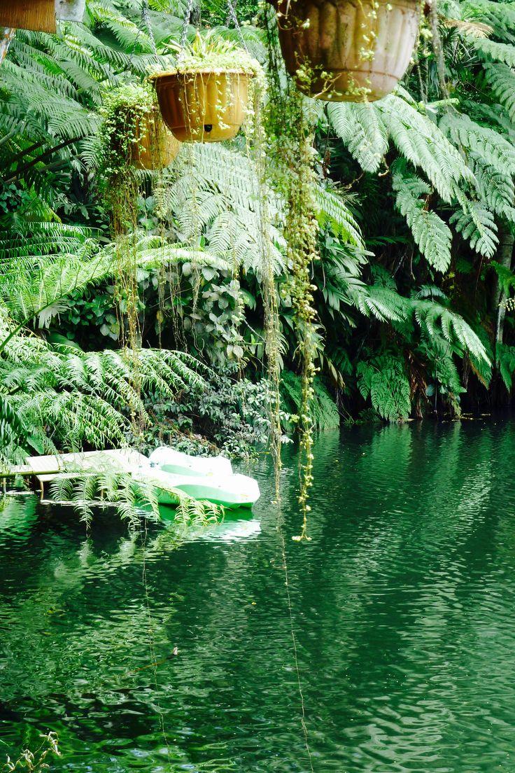 Volcanic lake garden Suva Fiji