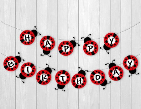 Ladybug-themed Birthday Party Banner 1