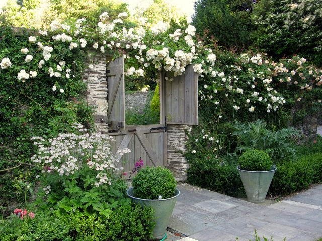Cascades of creamy white roses form a backdrop to a herbaceous border - Planting scheme by Jo gardens