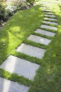 Concrete pavers set below grass line.  Easy, informal walkway from driveway to the back yard. This is what I need only about 5-7 of them. Easy.