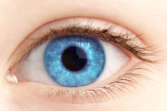 Otra ventaja de tener ojos azules. www.farmaciafrancesa.com/main.asp?Familia=189&Subfamilia=269&cerca=familia&pag=1&p=223