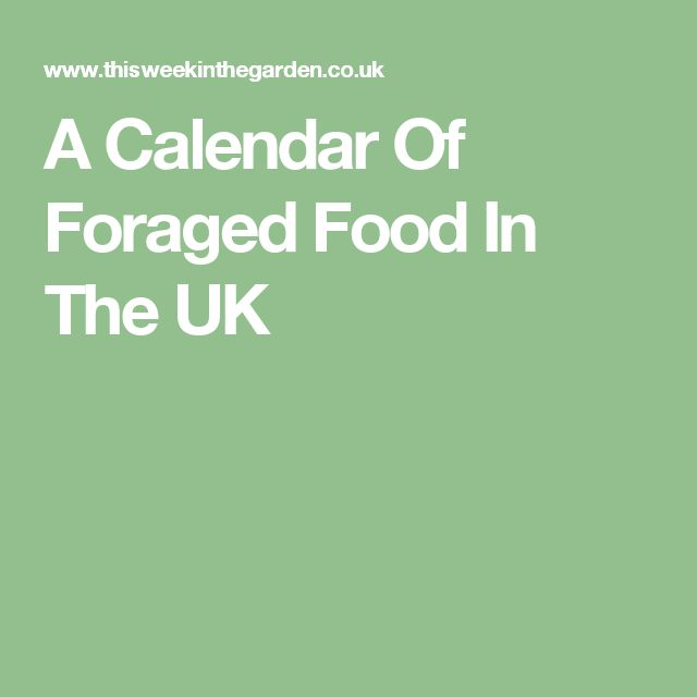 A Calendar Of Foraged Food In The UK