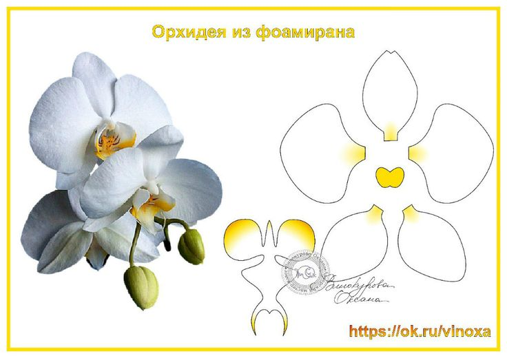 gallery.ru watch?ph=bD8V-gM8Ix&subpanel=zoom&zoom=8
