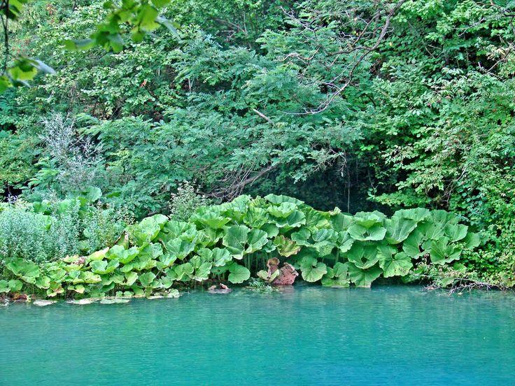 Blue Lagoon of Kilkis - Macedonia Greece #macedonia #macedonia2014