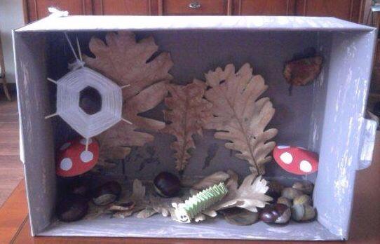 Herfst doos maken. Met spulletjes uit de natuur. Ook kunnen ze een spinnenweb en een paddenstoel maken.