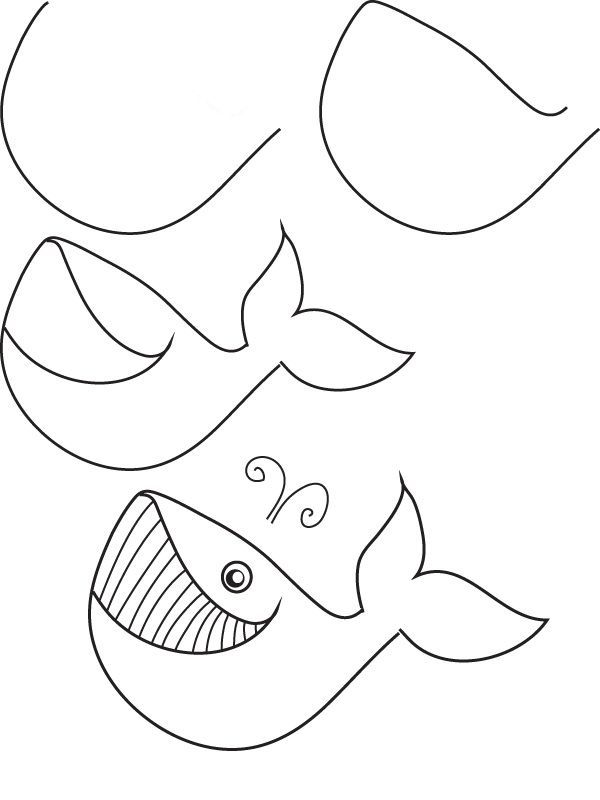 learn how to draw a whale with simple step by step instructions