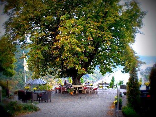 Das Günderodehaus. Das Gebäude wurde von Edgar Reitz als Kulisse für den TV-Film HEIMAT genutzt. Oberwesel in Rheinland-Pfalz Story dazu auf dem Reiseblog www.anderswohin.de: http://www.anderswohin.de/2011/10/im-gunderode-haus-in-oberwesel.html