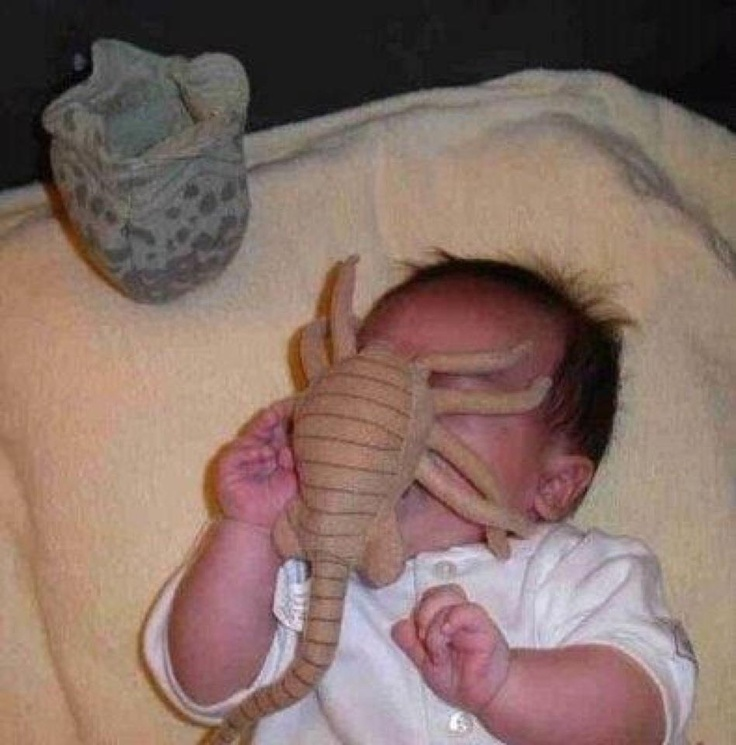 """Alien Facehugger"" Plush Toy - Love this!!"