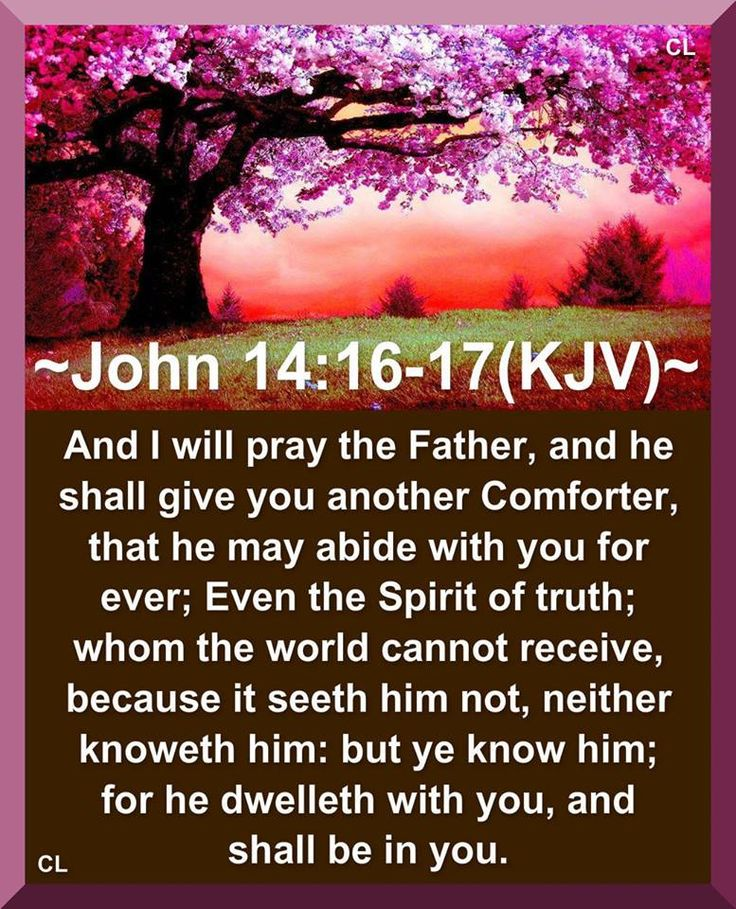 Thank You for Your Holy Spirit that is with us always~ John 14:16-17 ~