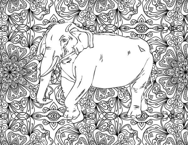 Adult Coloring Pages Elephant 1