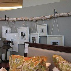 birch branch resting on curtain hooks serves as a hanger for pictures.