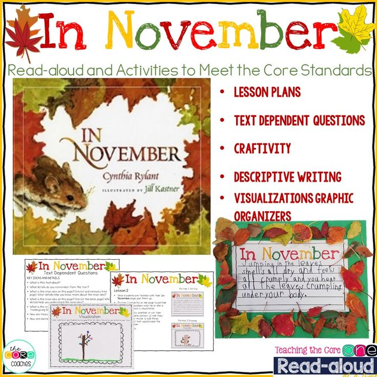 In November by Cynthia Rylant is the perfect read aloud for descriptive writing and teaching visualizations.