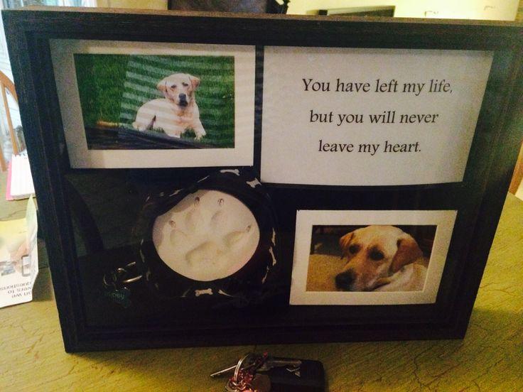 Memorial for pet. Brody's shadow box. ❤️