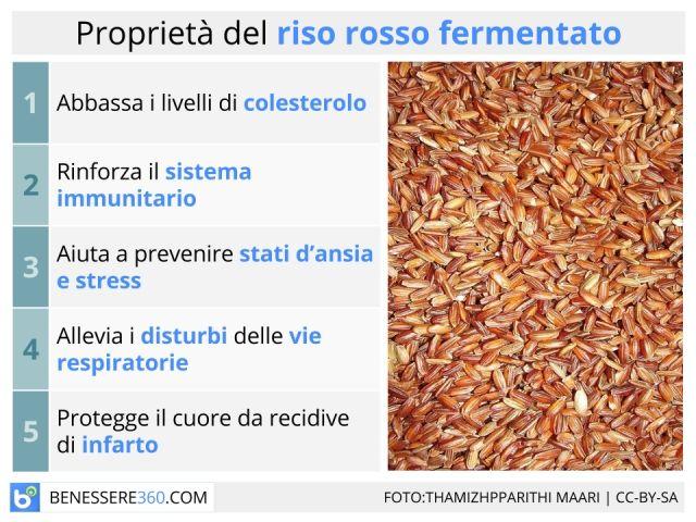 Il riso rosso ha proprietà anti colesterolo e di difesa del sistema immunitario, ma ha controindicazioni? Approfondiamo le formulazioni e la posologia di quest'integratore.