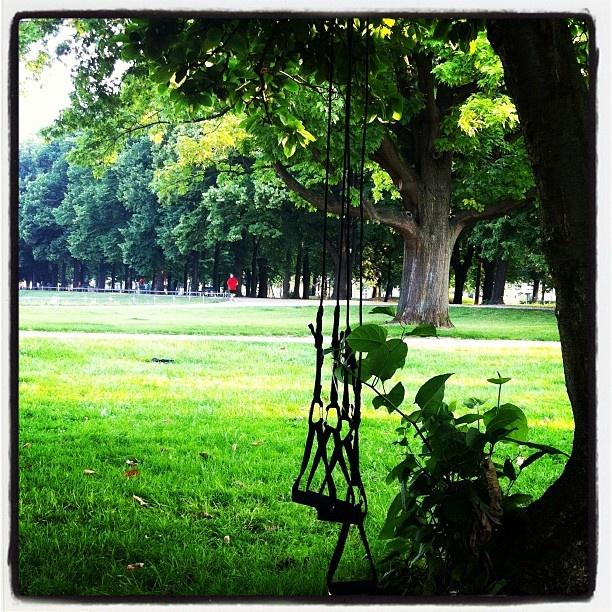 8Uhr in Bonn: Outdoorgym! Herrlicher Start in den Tag!!! » @roblitz » Instagram Profile » Followgram
