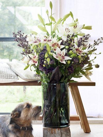 Lilienbouquet #tollwasblumenmachen #lily #lilie #flower #blumen #strauß #dog