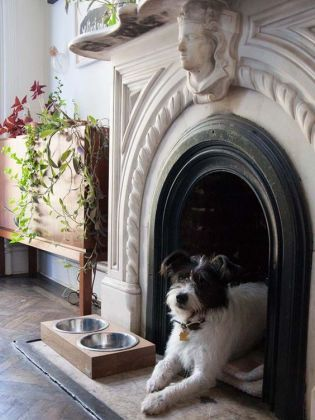 1000 id es sur le th me niches pour chien sur pinterest chiens niches et mod les de niche. Black Bedroom Furniture Sets. Home Design Ideas