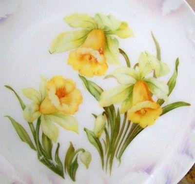 Connie loved daffodils.    Cyndi