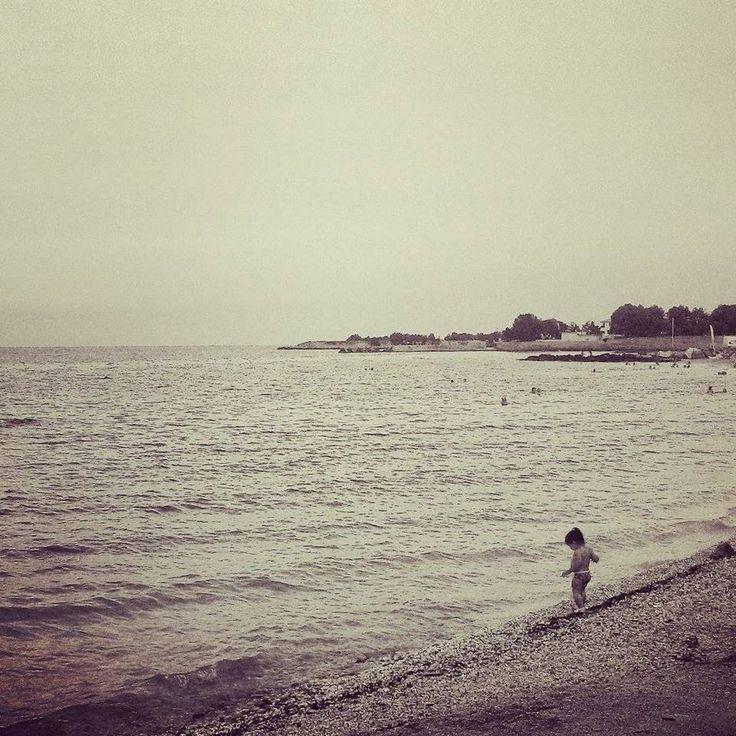 nea makri /estate 2015