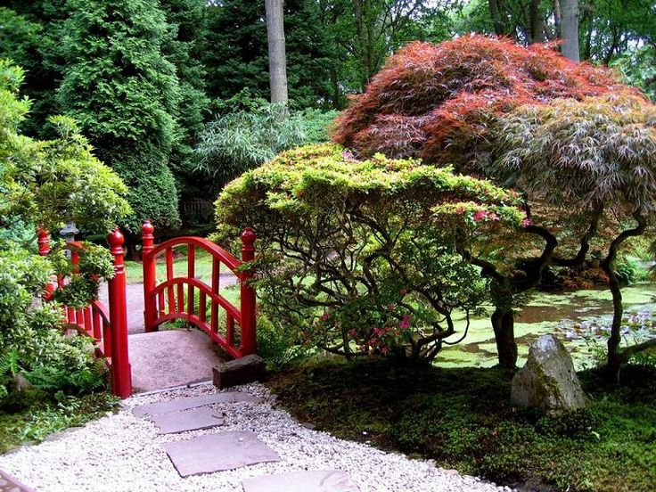 441 Best Images About Japanese Garden Pictures And Asian