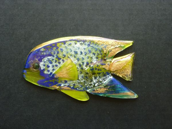 This fused glass fish is on display as part of a painting created for a local shop. The angelfish is the third in the series. The three fish are featured in Fired Arts & Crafts July 2013 issue.