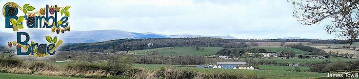 Bramblebrae self catering holiday cottage in Scotland