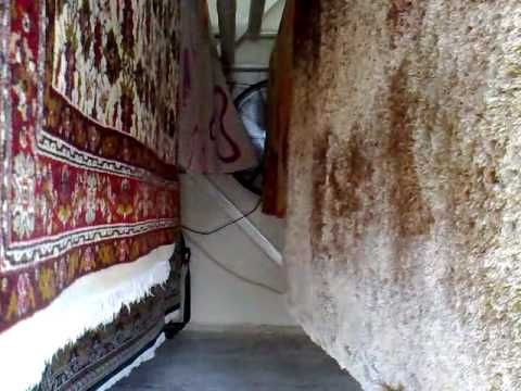 clean and dry carpet with technology