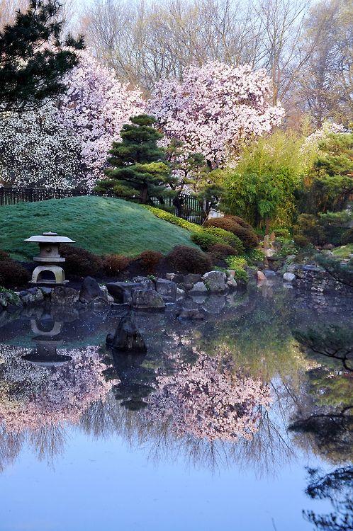 Japanese garden at Fairmount Park, Philadelphia, Pennsylvania