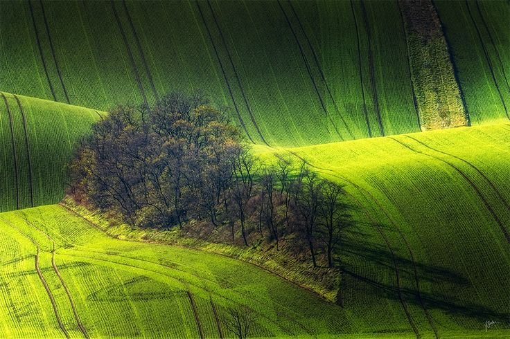 Shadowplay on Island - South Moravia