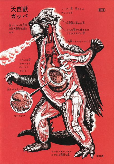 "Illustrations by Shoji Ohtomo Anatomical charts are from the book ""Kaiju Zukan"" ( Monster Picture Book )"