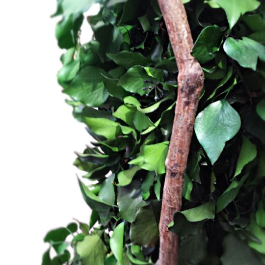 Totem Hedera Stabilizat 1.6 m  #preseved #plants #interior #decoration #best #plant for #indoor #plante #stabilizate #decor #interior