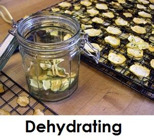 Dehydrating Food for food storage. Dehydrator reviews