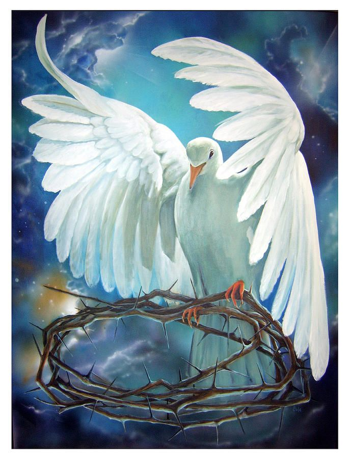 The Dove Painting by Larry Cole